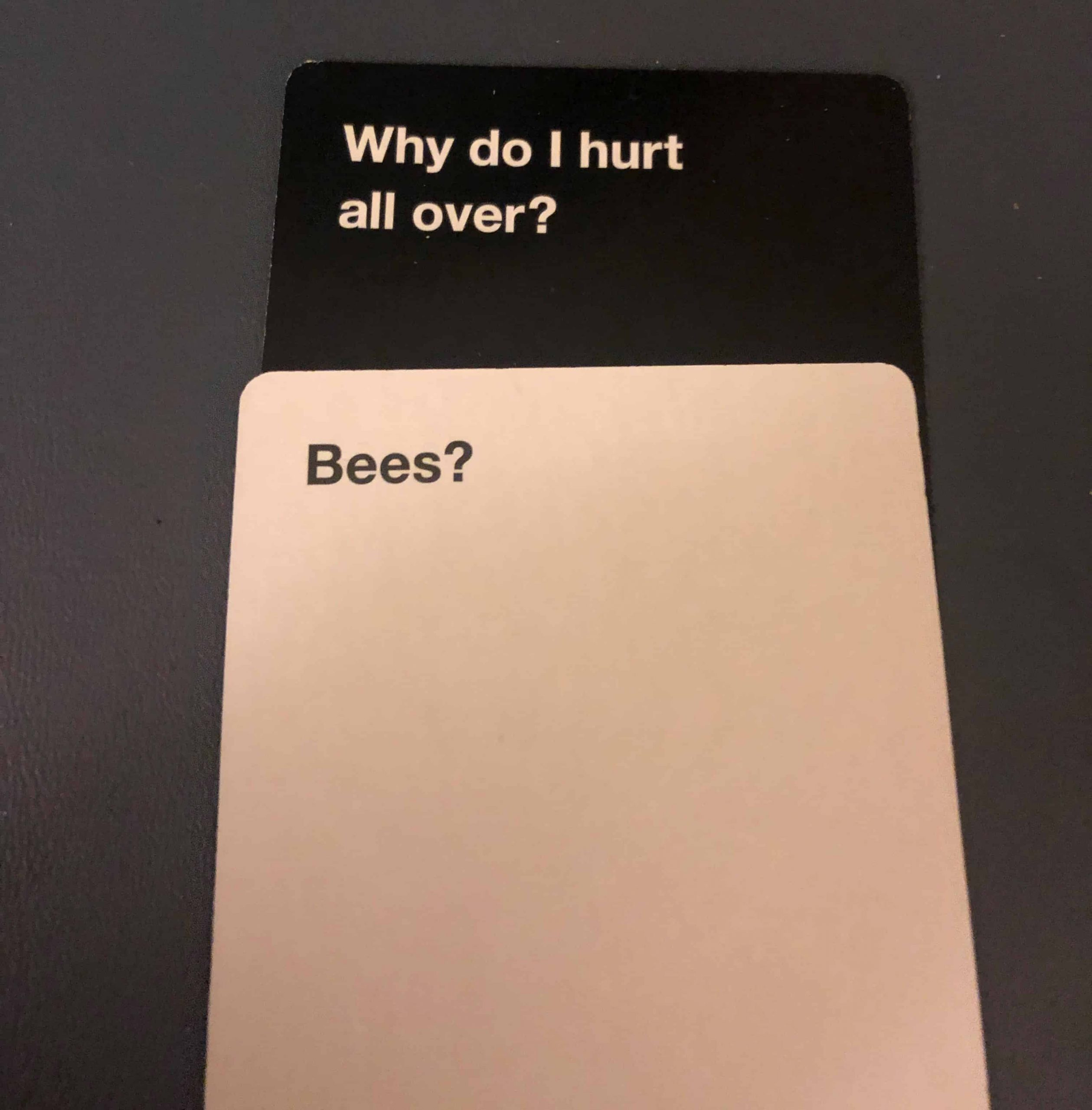 Why-Do-I-Hurt-All-Over-Bees